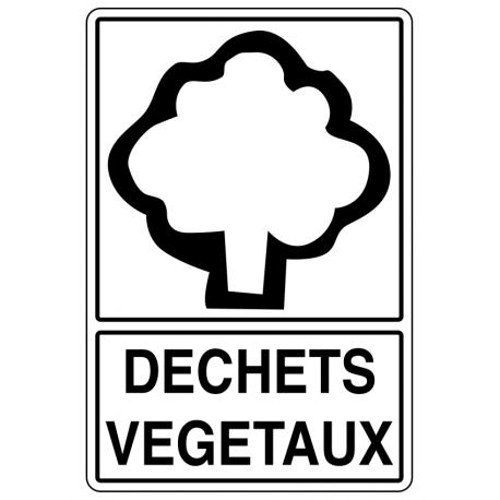 Tri déchets végétaux
